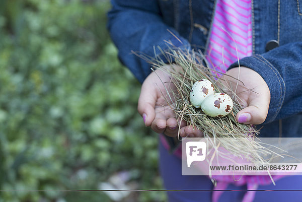 A girl holding out cupped hands  with a small bunch of twigs and two bird's eggs.