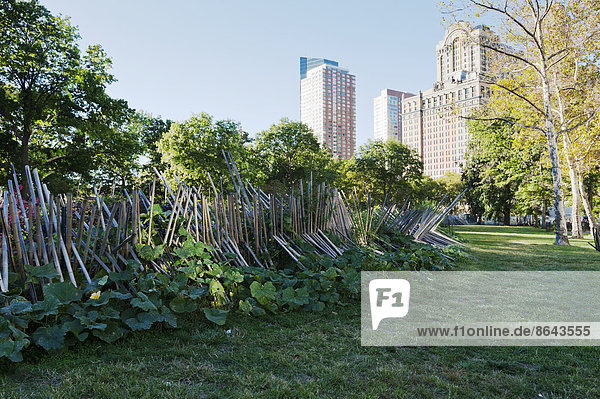 Battery Urban Farm im Battery Park  Manhattan  New York  USA