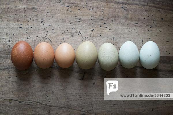 Eier in Reihe  Nahaufnahme
