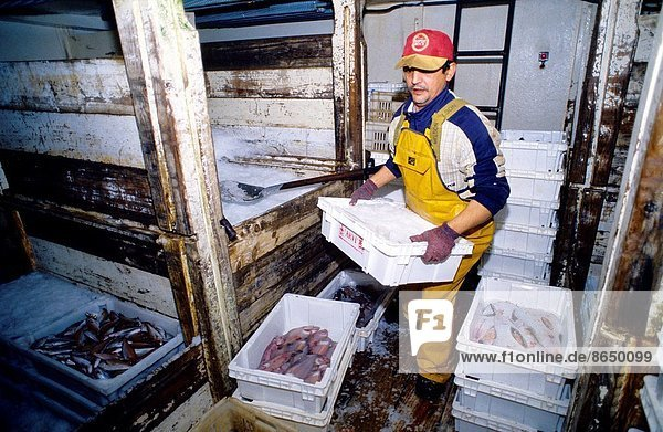 Life on board in a trawler (Hermanos Soage). Eastern Atlantic. Galicia. Spain.