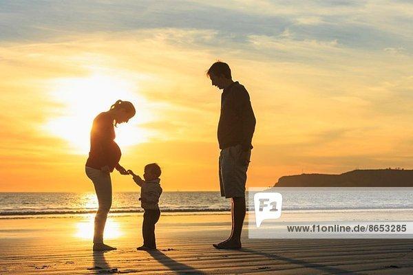 Familie und Kleinkind spielen am Strand bei Sonnenuntergang  San Diego  Kalifornien  USA