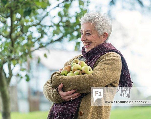 Fröhliche Seniorin mit einem Arm voller Äpfel