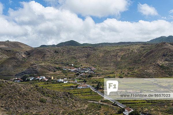 Plantagen bei Santiago del Teide  Vulkanlandschaft  Teneriffa  Kanarische Inseln  Spanien