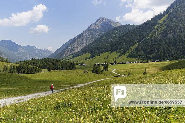 Almgrund Nenzinger Himmel mit Fundelkopf  Gamperdonatal  Gemeinde Nenzing  Rätikon  Vorarlberg  Österreich