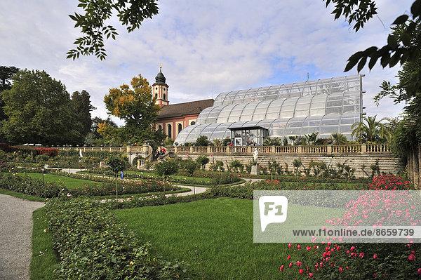 Italienischer Rosengarten mit Palmenhaus und der Schlosskirche Sankt Marien  Mainau  Baden-Württemberg  Deutschland