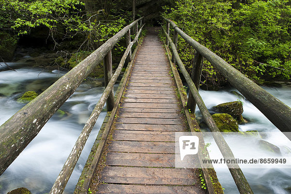 Wooden footbridge over brook with moss-covered stones  Golling Waterfall  Salzburg  Austria