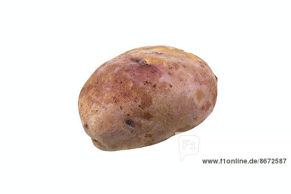 Kartoffelsorte Preußen