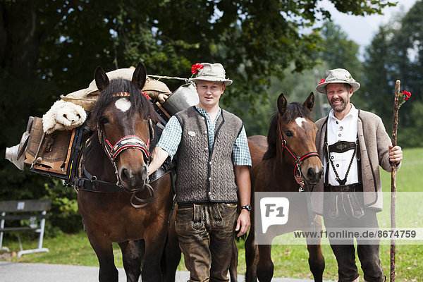 Farmers with pack horses  Noric horses  old pack-saddle on horse  Almabtrieb cattle drive  Söll  North Tyrol  Austria