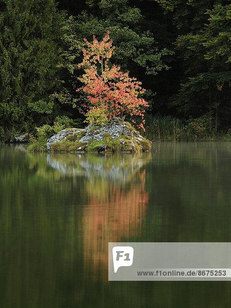See  Herbst  Kramsach  Tiroler Unterland  Tirol  Österreich