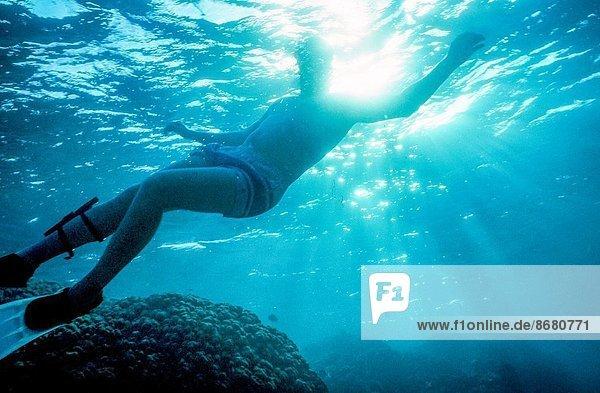 Wasser  Mann  Schwimmflosse  Flosse  schwimmen  Belize