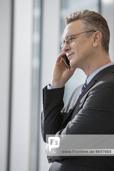 benutzen  Geschäftsmann  Telefon  Büro  Ansicht  Seitenansicht  Handy