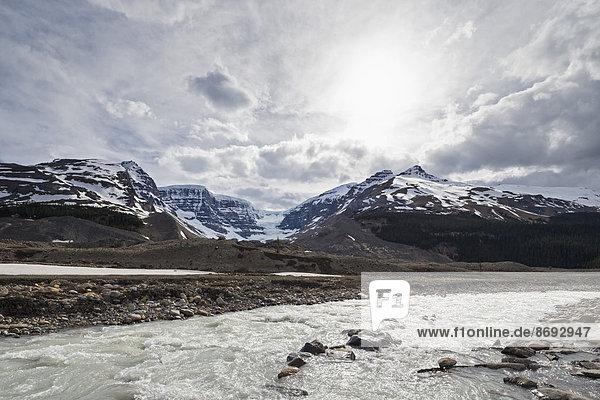 Kanada  Alberta  Rocky Mountains  Jasper National Park  Athabasca Glacier  Athabasca River  Schmelzwasser aus dem Athabasca Glacier
