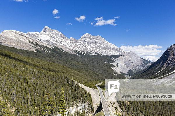 Kanada  Alberta  Banff National Park  Icefields Parkway  Cirrus Mountain