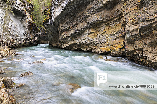 Kanada  Alberta  Banff Nationalpark  Johnston Creek  Johnston Canyon