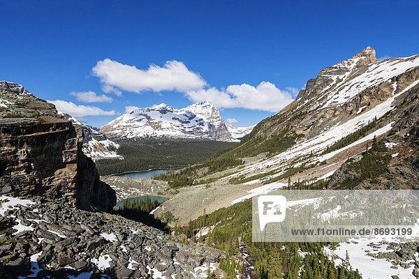 Kanada  British Columbia  Yoho Nationalpark  Victoria Lake und Lake O'Hara umgeben von Bergen