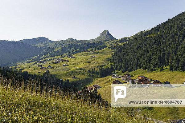 Österreich  Vorarlberg  Bregenzerwald  Damuels und Damuelser Mittagsspitze