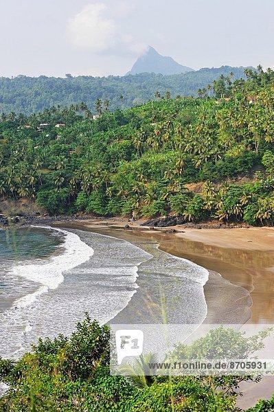 Osten  Buch  Küste  Insel  Afrika  Bucht