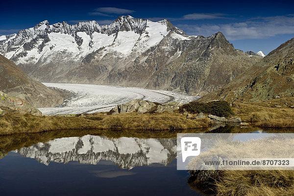 frontal Bettmeralp Schweiz Aletschgletscher Kanton Wallis