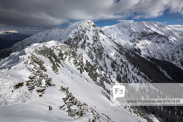 Großer Wildkamm  Mitte  und Hohe Veitsch  rechts  vom Kleinen Wildkamm  Niederalpl  Mürzsteger Alpen  Steiermark  Österreich