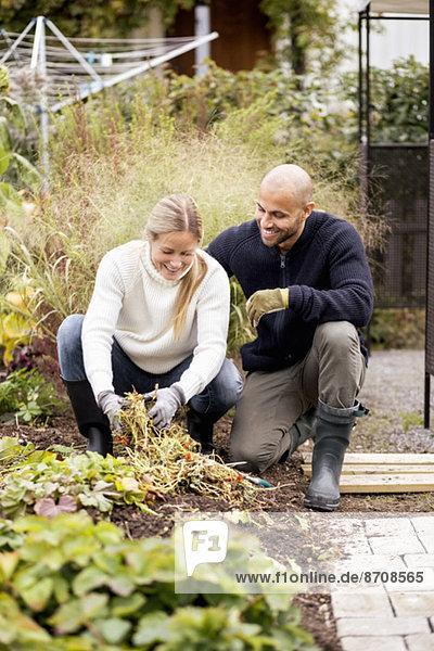 Reife Paare bei der Gartenarbeit auf dem Hof