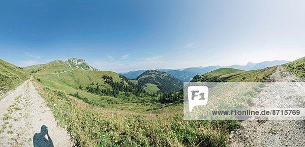 Panoramablick auf zwei Feldwege und Berglandschaft  Achensee  Tirol  Österreich