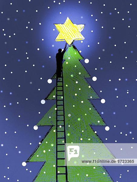 Mann auf einer Leiter platziert einen leuchtenden Stern auf einem großen Weihnachtsbaum