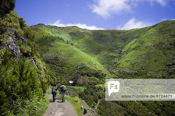 Wilde  grün bewachsene Gebirgslandschaft mit Wanderweg und Wanderern  Madeira  Portugal