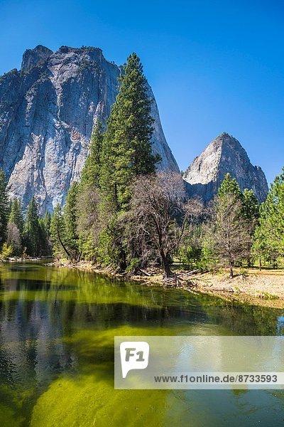 Vereinigte Staaten von Amerika  USA  Berg  klein  See  Yosemite Nationalpark  Kalifornien