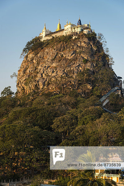 Buddhist monastery  gilded Tuyin Taung Pagoda on the Taung Kalat volcanic cone  Mount Popa  Mandalay Region  Myanmar