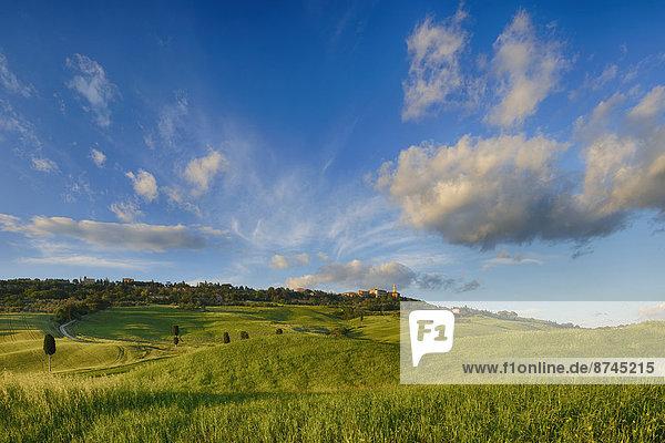 rollen  Landschaft  Hügel  UNESCO-Welterbe  Italien  Pienza  Toskana