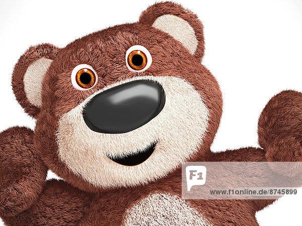 Bär  Illustration  weiß  Hintergrund  Close-up  close-ups  close up  close ups  Teddy  Teddybär