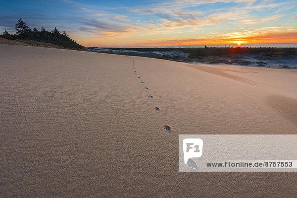 Sonnenuntergang  Sand  Fußabdruck  Düne