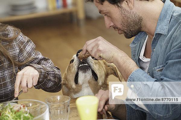 Mann isst am Tisch und füttert Hund