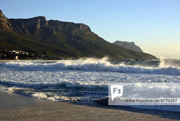 Am Strand von Camps Bay  Kapstadt  Westkap  Südafrika