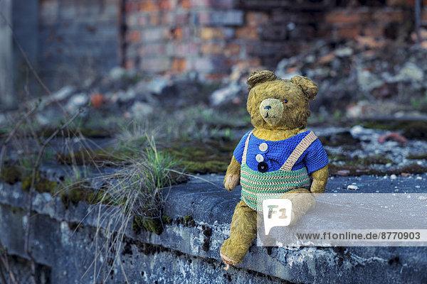 Polen  Auschwitz  alter Teddybär
