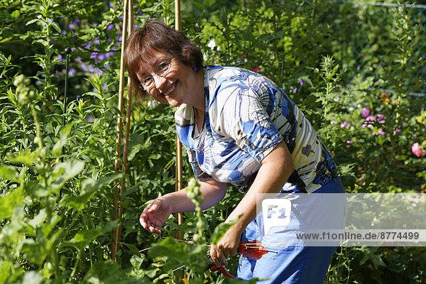 woman gardening in garden