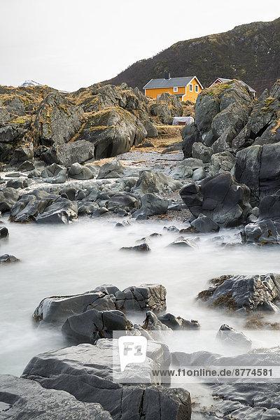 Skandinavien  Norwegen  Lofoten  einsames Haus an der Küste von Gimsoy