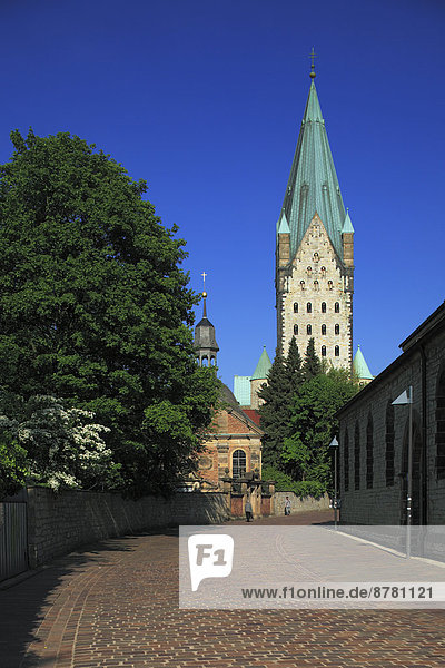 Kuppel  Europa  Kathedrale  Gotik  Barock  Kuppelgewölbe  Deutschland  Nordrhein-Westfalen  Paderborn  Westfalen