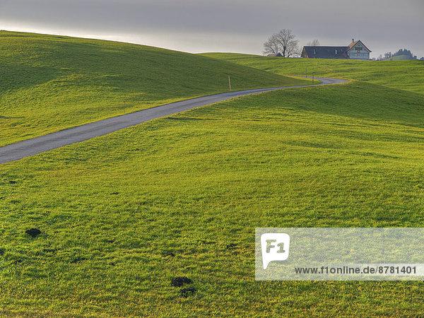 Landschaftlich schön  landschaftlich reizvoll  Europa  Landschaft  Landwirtschaft  Bauernhof  Hof  Höfe  Herbst  Wiese  Feldweg  Schweiz