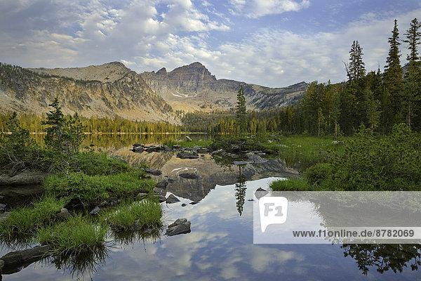 Vereinigte Staaten von Amerika  USA  Anakonda  Eunectes  Sommer  See  Landschaftlich schön  landschaftlich reizvoll  Warren