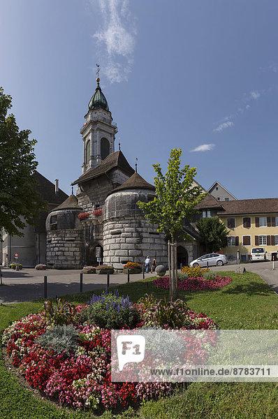 Europa  Blume  Sommer  Stadt  Dorf  Eingang  Schweiz