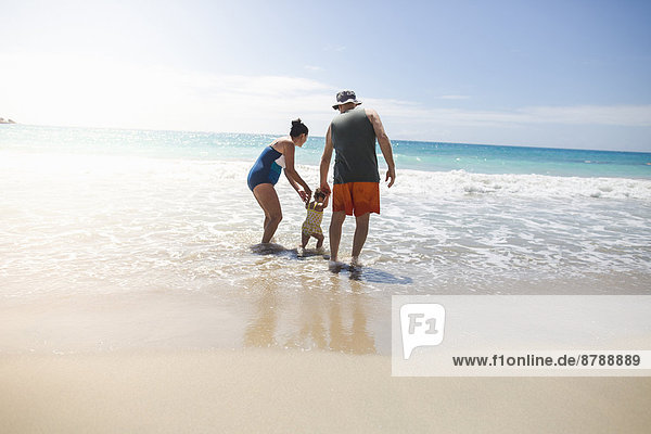 Toddler and grandparents holding hands  walking on beach