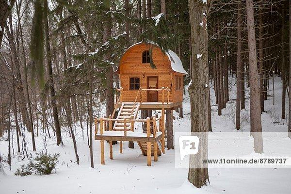 Handgebautes Holzchalet auf Stelzen im verschneiten Wald Handgebautes Holzchalet auf Stelzen im verschneiten Wald