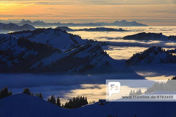 Panorama  Europa  Schneedecke  Berg  Winter  Abend  Sonnenuntergang  Himmel  Dunst  Schnee  Nebel  Alpen  blau  Ansicht  Sonnenlicht  Westalpen  Kronberg  Bergmassiv  schweizerisch  Schweiz
