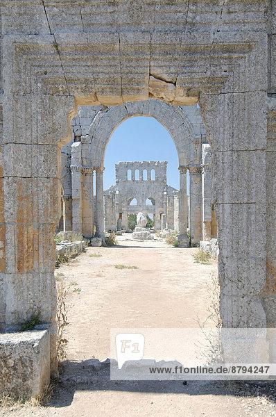 Die Ruinen der Qal?at Sim?an oder Kirche des Heiligen Simeon Stylites  Palmyra  Distrikt Palmyra  Gouvernement Homs  Syrien