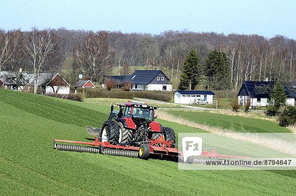 Racken Coraciidae arbeiten Baum Gebäude grün Landwirtschaft Traktor Hintergrund Feld Schweden