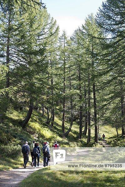 Italy  Piedmont  Alpe Devero
