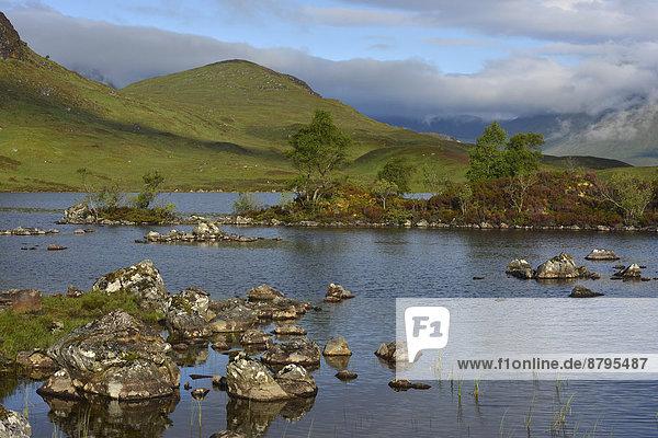 Rannoch Moor  Highlands  Schottland  Großbritannien
