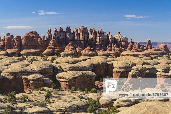 Vereinigte Staaten von Amerika  USA  Felsformation  Anschnitt  Nähnadel  Nadel  Utah