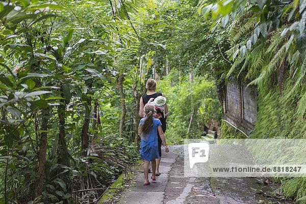 Tropisch  Tropen  subtropisch  Europäer  gehen  Garten
